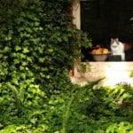 fawkes house garden
