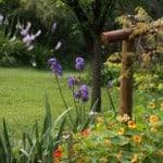 fawkes house gardens