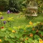 accommodation gardens bickley Valley