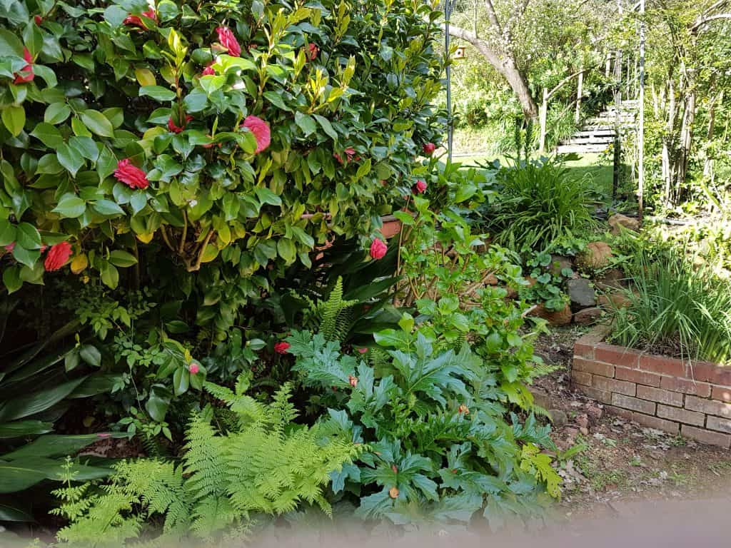 winter-garden-fawkes-house-perth-hills-bickley-valley